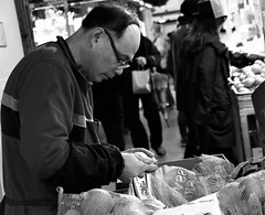 Inspecting the Oranges (Coral Norman) Tags: working job candid fruit oranges bw bnw blackandwhite produce portrait market