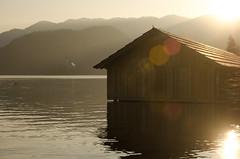 Lake Bled (fede_gen88) Tags: winter light sunset sun lake mountains alps church water island nikon europe sunny slovenia alpine flare bled rays slovenija otok julianalps blejski jezero lakescape republikaslovenija blejsko d5100