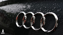 Audi Logo (Brandon Bailey Design/Photography) Tags: rain germany europe european euro brandon german bailey a4 audi b7 s4 vag rs4 carporn audizine