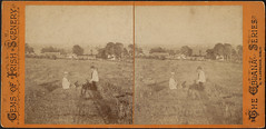 Ballyporeen (house from hill) (Boston Public Library) Tags: meadows villages bostonpubliclibrary bpl stereographs photographicprints