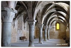 Soria -Monasterio St. Mª de Huerta_07. Mª de Huerta_05 (ferlomu) Tags: soria monasterio gotico capitel santamariadehuerta ferlomu