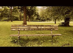 waiting for people (MissyPenny) Tags: trees bench pennsylvania langhorne playwickipark southeasternpa