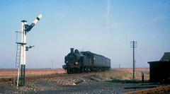 31530 at Stokes Junction (robmcrorie) Tags: last train rail railway loco trains junction class h wainwright hundred locomotive enthusiast stokes hoo railways ashford railfan 1961 closure 1905 31530 044t