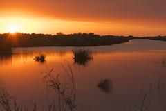 Sunset (HumbertoOmena) Tags: sunset nature florida everglades
