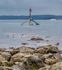 Burry Port 2014 (jas36uk) Tags: wfcburryport2014