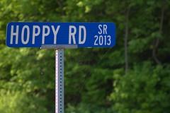 Hoppy Road (lenswrangler) Tags: road blue green sign forest pennsylvania web streetsign spiderweb hoppy digikam lenswrangler
