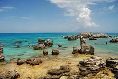 Beach Bermuda. (Don Mosher Photography) Tags: