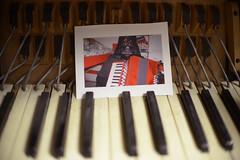 Flory Jagoda's Accordion (Virginia Humanities) Tags: music orange usa accordion master repair va singer jewish apprentice harmonica sephardic floryjagoda dalewise