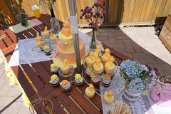 """Baby Shower - July 6, 2014-001 • <a style=""""font-size:0.8em;"""" href=""""http://www.flickr.com/photos/42153737@N06/14664013904/"""" target=""""_blank"""">View on Flickr</a>"""