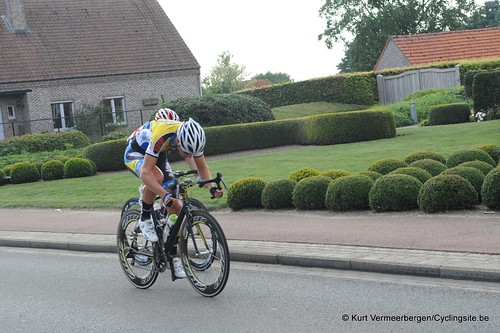 Geel Oosterlo  (257)