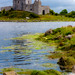 Dunguaire Castle - Kinvara