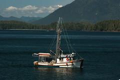 Jolly Roger (elsquid) Tags: ocean canada boat fishing bc pacific britishcolumbia vancouverisland tofino jollyroger