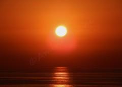 Sunsea (Amine Bachi) Tags: sunset sea soleil coucher alger