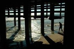 Checking the Water (EmperorNorton47) Tags: california summer digital pier photo afternoon santamonica underneath santamonicapier pylons