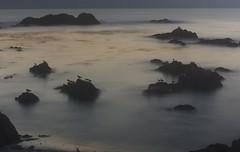 The Heavens on Earth (Therese Trinko) Tags: ocean california ca longexposure sunset beach birds misty night coast monterey rocks waves pacific pacificgrove