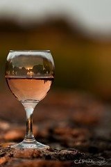 Weinglas in der Abendsonne (- CEPhotography -) Tags: eos licht frankreich sonnenuntergang mark iii maritime 5d mm claus landschaft sonne schatten 70200 glas charente mauer wein ruhe weinglas ellerkamp cephotography