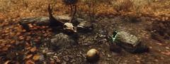Autumnshade Clearing (B Magno) Tags: landscapes scenery videogames gaming bethesda environments enb skyrim skyrimmod brianmagno