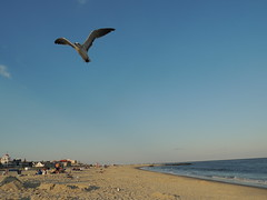 Beautiful beach and ocean views from Cape May, NJ 2014 (The doll keeper) Tags: new may jersey cape
