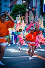 2014_08_30_Mitaka_AwaOdori_5D3_2014_08_30_Mitaka_AwaOdori_5D3_077_HD (Nigal Raymond) Tags: festival japan dance  mitaka matsuri awaodori     100tokyo cooljapan fudouren nigalraymond wwwnigalraymondcom 5dmk3 5d3 sakuraren  mitakaren awaodori2014 bikkuriren