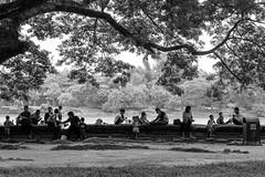 Angkor Wat (shin7d) Tags: bw blackwhite cambodia angkorwat siemreap