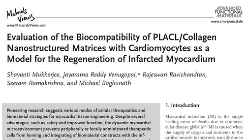 Evaluation of the Biocompatibility of PLACL/Collagen Nanostructured Matrices with Cardiomyocytes as a Model for the Regeneration of Infarcted Myocardium