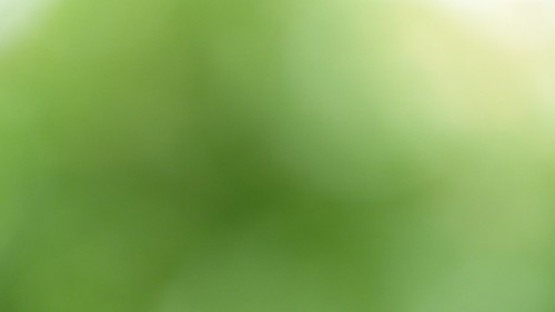 Background_Green_02