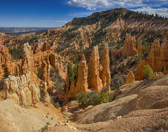 From the Navajo Loop Trail ( Explored ) (-william) Tags: panorama bryce navajo