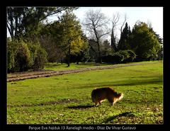 Parque Eva hajduk 13 Ranelagh - Diaz D e Vivar Gustavo (Diaz De Vivar Gustavo) Tags: parque argentina de eva buenos aires gustavo 13 diaz ranelagh hajduk vivar
