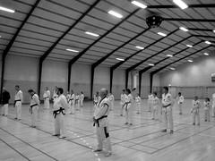 40 years taekwondo in Nordborg (Landanna) Tags: bw white black martialarts taekwondo zwart wit sort hvid zw 40yearstaekwondoinnordborg