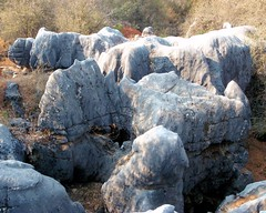 022 Karst Rocks (saschmitz_earthlink_net) Tags: california rocks columbia marble karst 2014 tuolumnecounty nsswesternregional marblequarryrvpark
