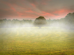 Misty Morning (explored) (Alan10eden) Tags: morning autumn light mist field grass fog canon landscape dawn early september lone northernireland keady daybreak ulster beforesunrise 334 countyarmagh 70d