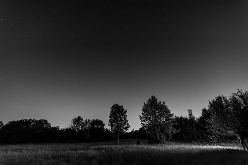 2014-09-17-biedermannsdorf_(71_von_82).jpg
