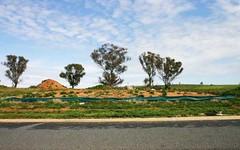 42 John Potts Drive, Junee NSW