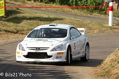 IMG_5053.jpg (Bils21) Tags: france fr bourgogne 307wrc fuissé guymottard es4fuissébussières rallyedesvinsmâcon2015