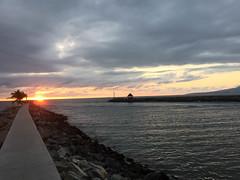 Puerto Vallarta, Feb. 2015 (David N. Berger) Tags: ocean travel flowers love beautiful swim mexico freedom live joy jalisco sunsets nayarit adventure nuevovallarta laugh puertovallarta hotels luxury discover