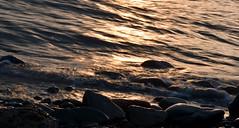 Ebb tide #02 (Searigg) Tags: 2017th02 beach water lowsun
