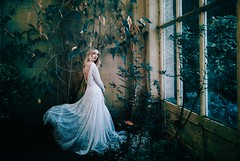 ~Find me where the wild things are~ (abi.garvey) Tags: fineart flickr fine enchanted enchantedart fairytale fairytalephotography whimsical whimsy nikon