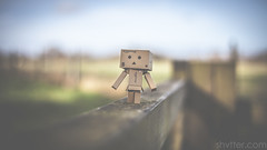Strolling (#Weybridge Photographer) Tags: adobe lightroom canon eos dslr slr mk ii mkii danbo danboard kiyohiko azuma manga cardboard box amazon robot card board walk walking stroll strolling gate character figure