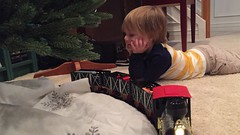 "Paul Watches the Train Around the Christmas Tree • <a style=""font-size:0.8em;"" href=""http://www.flickr.com/photos/109120354@N07/32957392712/"" target=""_blank"">View on Flickr</a>"