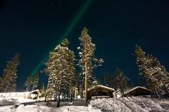 IMG_2898 (F@bione©) Tags: lapponia lapland marzo 2017 husky aurora boreale northenlight circolo polare artico rovagnemi finalndia finland