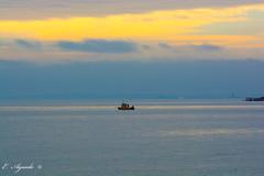 Shellfishing (E. Aguedo) Tags: shellfishing boat sunset ocean water warwick winter rocky point park clouds sea colors ngc new england rhode island r