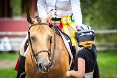 Horse Show (JustJamieLeigh) Tags: horse horses horseback horsebackriding horseshow show equines english englishriding equestrian equine riding canon60d canon 60d competition