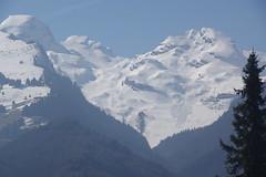 IMGP9255 (Alvier) Tags: schweiz ostschweiz rheintal werdenberg alviergebiet chrummenstein berg lawine