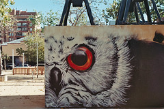 Street, art, owl. (The Foreign Fox) Tags: barcelona barcelonaexperience spain speakcatalan graffiti owl wall holiday takemeback youcanfindartineverything justlookforit art streetart create plant analog analogue analogphotography film 35mm 2017 minolta x300s agfavista color ishootfilm youngspirit