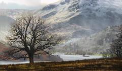 Frosty Ullswater (jo92photos) Tags: 15challengeswinner frosty lakedistrict winter uk ullswater mountains lake rural countryside unanimous