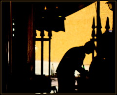 Shadows (Pifou 2010) Tags: light black paris france art colors yellow jaune garden noir shadows couleurs jardin ombre lumiere palaisroyal waiter 2014 serveur gerardbeaulieu pifou2010