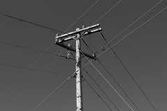 The Grid (sealrocker) Tags: bw monochrome grid wire power telephone pole electricity