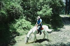 Cowboy! ([s e l v i n]) Tags: wild horse india green cowboy traveller riding jungle greenery rider himachal horseriding dalhousie himachalpradesh khajjiar selvin ©selvin horsedrinkingwater