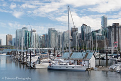 View from Stanley Park (SonjaPetersonPh♡tography) Tags: park canada fountain birds vancouver boats nikon britishcolumbia ducks seawall stanley stanleypark mallard sailboats canadaplace greatblueheron lostlagoon coalharbor rosegardens vancouverharbour vancouverskyline stanleyparkseawall vancouverpanorama d5200 stanleyparkrosegarden nikond5200
