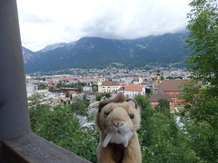 Smiladon Looks Down On Innsbruck (catz5555) Tags: city museum austria view innsbruck smilodon austriantyrol bergisel tryol smiladon